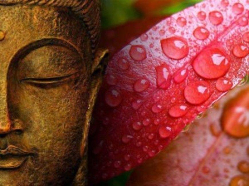 buddha1920