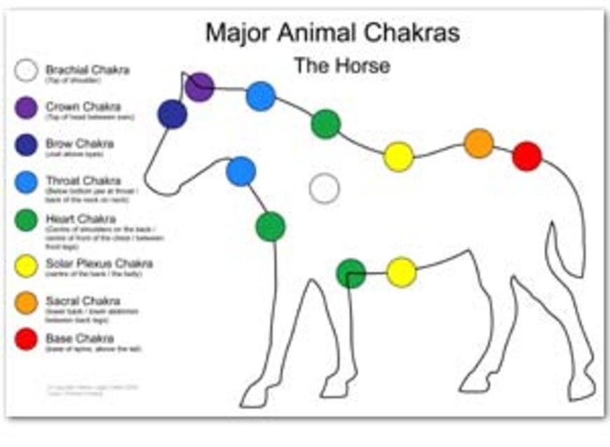 cakry kone