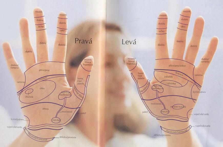 Další velmi jednoduchou technikou a navíc nejlépe dostupnou oblastí pro  masáž po celý den za každé situace je oblast dlaní 9a5f91c008
