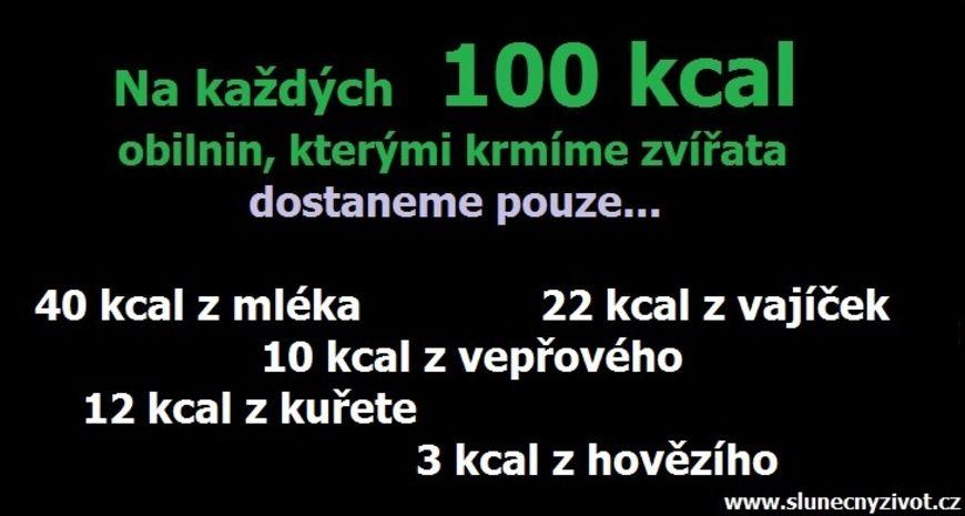 100 kcal