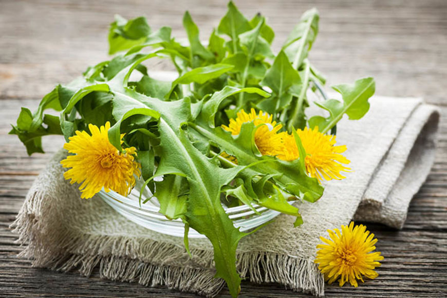 Foraged edible dandelion flowers and greens in bowl