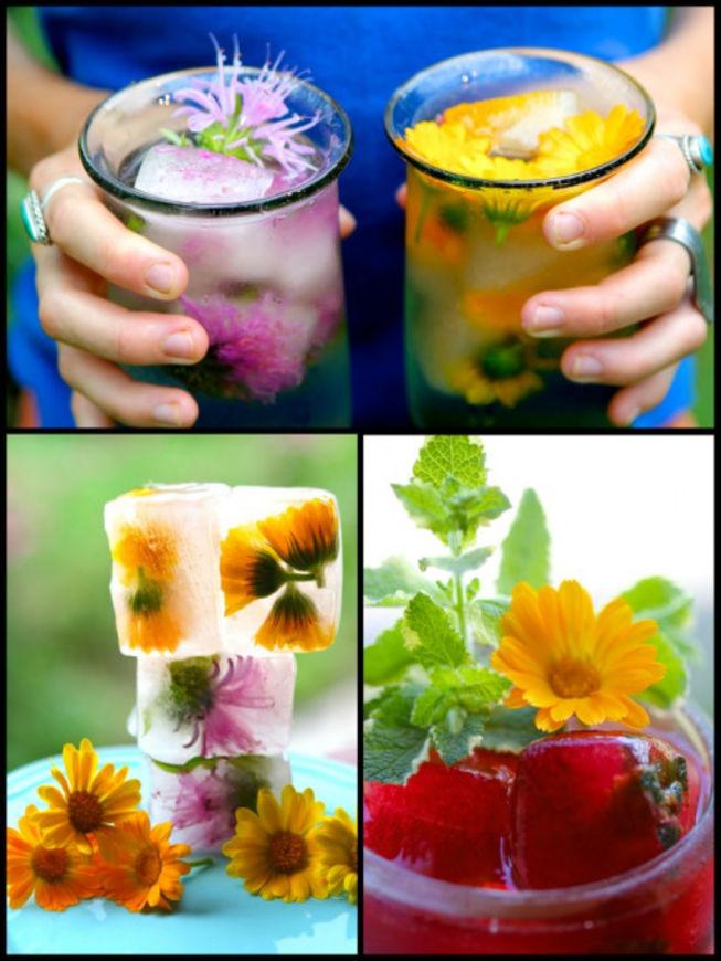 květinové kostky ledu