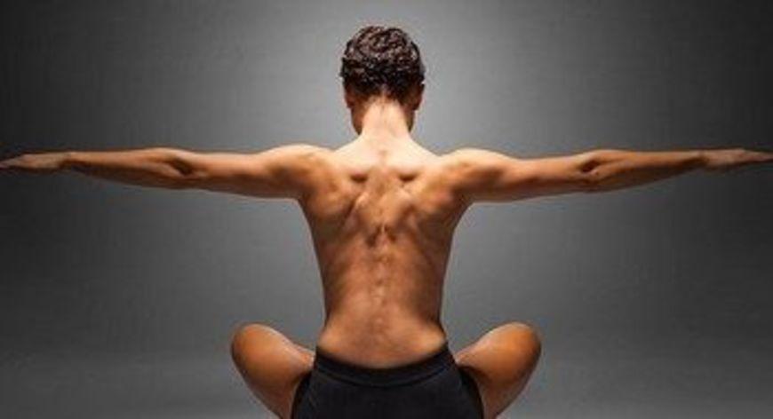 zádové svaly