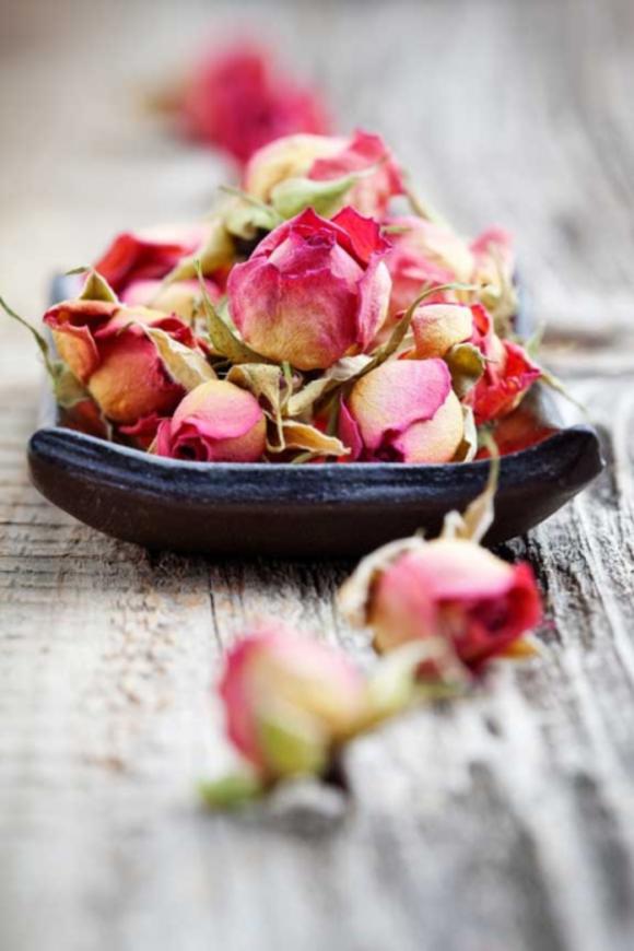 růže1